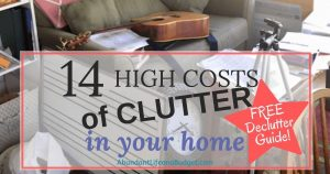 Free Declutter Guide!